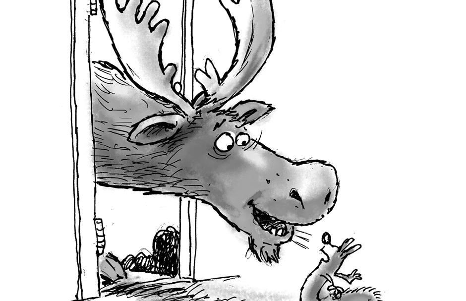 Knock-Knock Animal Jokes