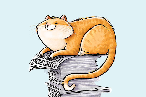 Why do cats lie on paper?
